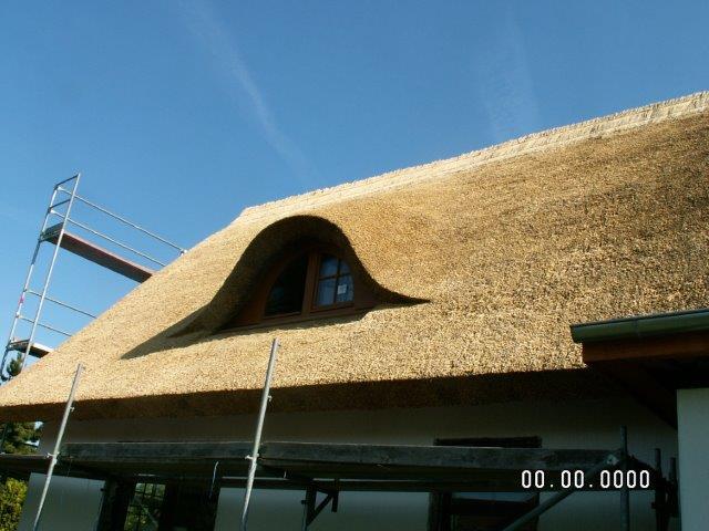 Reetdach für Inselhaus